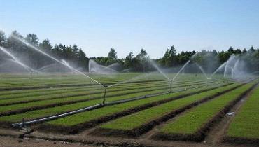 Remote Irrigation